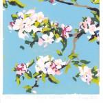 Fiona Carver Apple Blossom Wychwood Art-69685f32