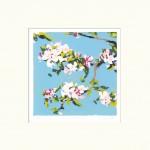 Fiona Carver Apple Blossom Wychwood Art-91660db7