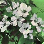 Jo Haran Delight in Green Wychwood Art 8-f529e3ab
