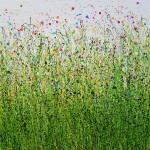 Painted_Meadows_#10-6ac1bce1
