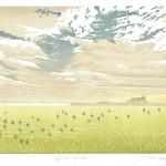 Steve Manning-Day's End Holy Island-Wychwood  Art (1)-0fd38b74