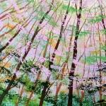 forest sky light close-78ca36b5