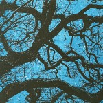 Anna Harley Starry Night (Medium) Wychwood Art-98e0f717
