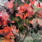Jo Haran Rose Bush on Silver Wychwood Art 6-0812013c