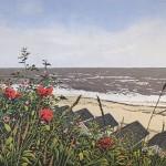 Seaside Poppies – Alexandra Buckle – Wychwood Art-1904b9e1