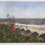 Seaside Poppies FF-e57623da
