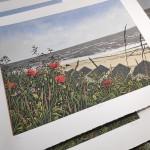 Seaside Poppies close-d01d0ee6