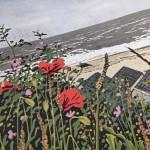 Seaside Poppies close up-7e5609b8