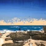 Tim Southall. Beach Boys. Wychwood Art-100dc5cb