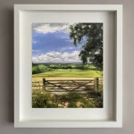 Gated-fields-in-Cotswold_Tushar-Sabale-70026f29-570×619