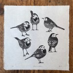 Jane Spink_Circle of Wagtails 1_Wychwood Gallery-b4ed669b