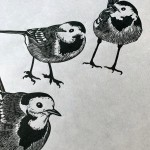 Jane Spink_Circle of Wagtails closeup_Wychwood Gallery-ef4c4221