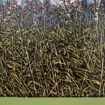 Jennifer Jokhoo Skies know no borders reeds enlargement Wychwood art-d7059d33