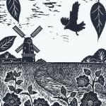 Joanna Padfield Norfolk Broads Marsh Harrier Wychwood Art (2)-9fa87096