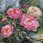 Pink-and-White-Peonies_Tushar-Sabale-3273303a-570×525 copy