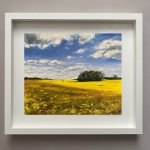 Rapeseed-Fields-in-Cotswold_Tushar-Sabale-12b60a0b-570×525 (1)