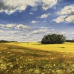 Rapeseed-Fields-in-Cotswold_Tushar-Sabale-12b60a0b-570×525