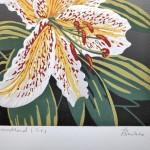 Woodland Lilies sig-c273ca1a