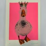 duckess 2-0321c97c