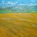 georgie dowling wychwood art barley view 15-7f94d676