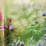 hampshire garden i dylan lloyd close up 1-7fba3ac7