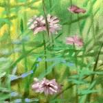 hampshire garden i dylan lloyd close up 2-9abe0727