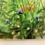 hampshire garden i dylan lloyd signature-6a200785