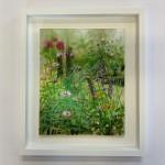 hampshire garden i dylan lloyd white background-fb22d080