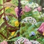 hampshire garden ii dylan lloyd close up 1-754bb525