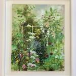hampshire garden ii dylan lloyd white background-48e216ac